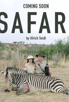safaribild